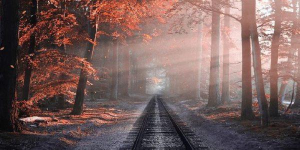 Los mejores paisajes de otoño para disfrutar
