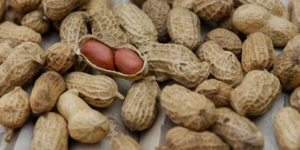Los beneficios de los cacahuates