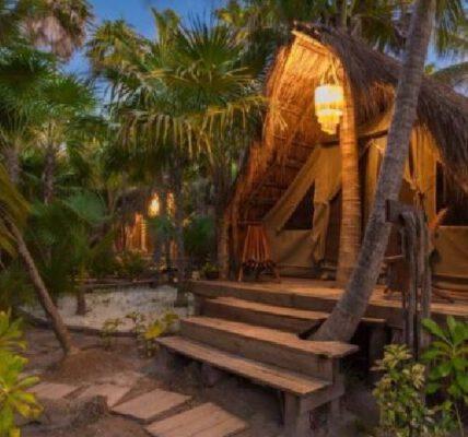 Hoteles mexicanos que son amigables con la naturaleza