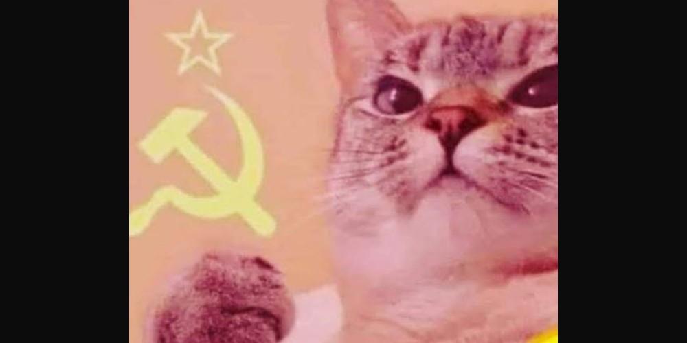 Memes de la vacunación con Sputnik en treintañeros